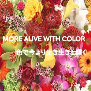 色で今よりイキイキと輝く